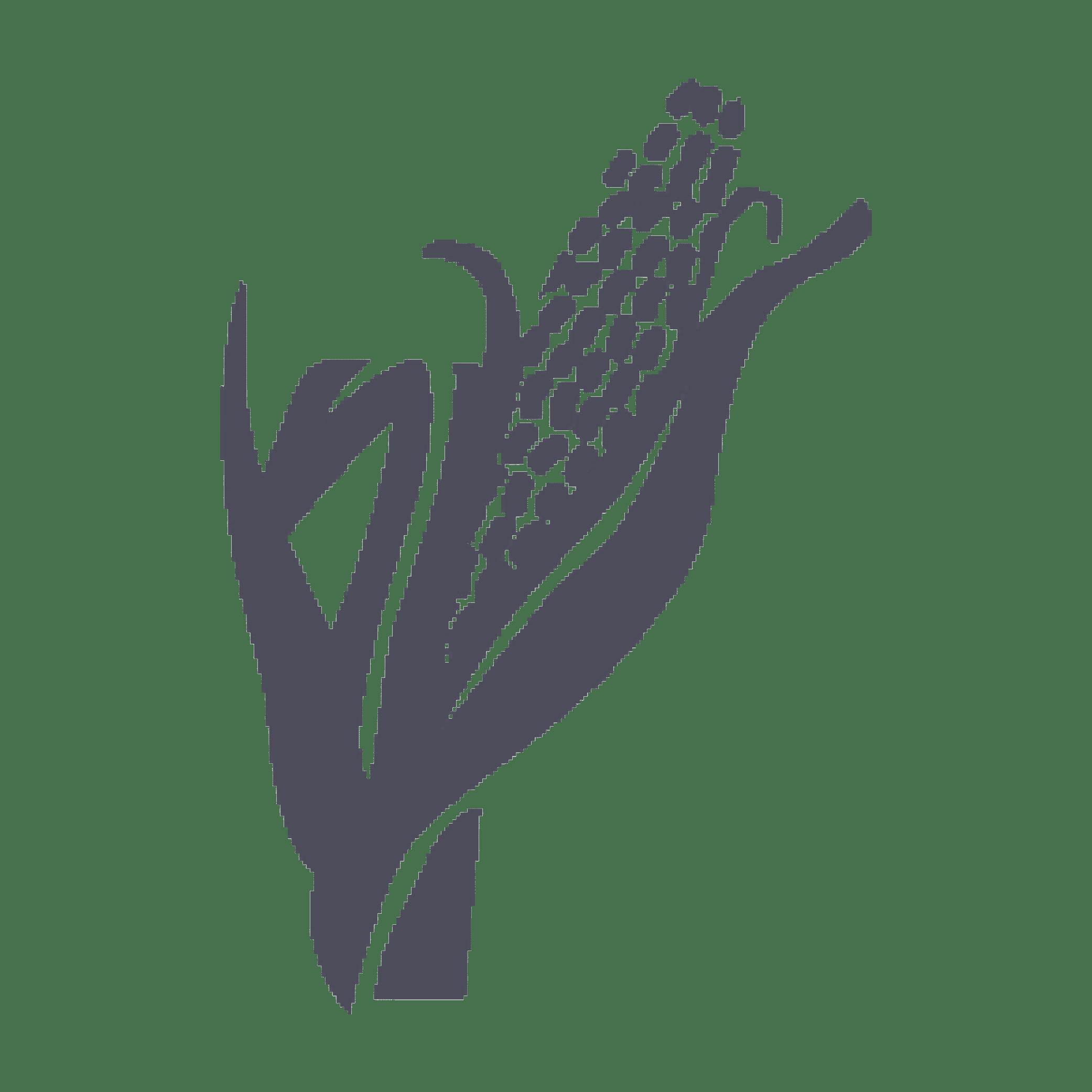 corn_non_GMO